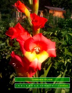 ICG Garden Guide
