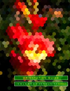 ICG Orientation Guide